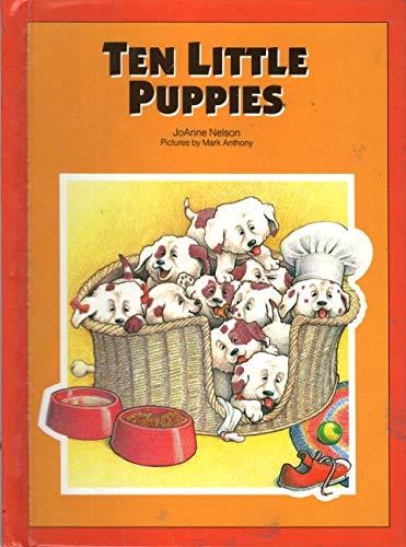 9780843124828: Ten Little Puppies