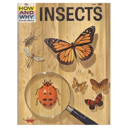Hw Insects (How & Why Wonder Books): Ronald N. Rood
