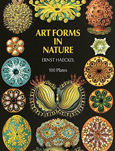 9780844650432: Art Forms in Nature