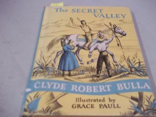 9780844669977: The Secret Valley