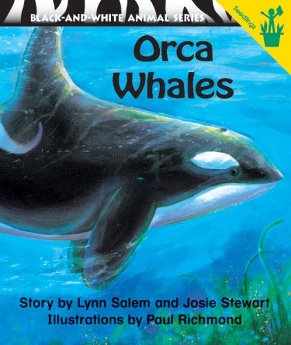 9780845436721: Early Reader: Orca Whales