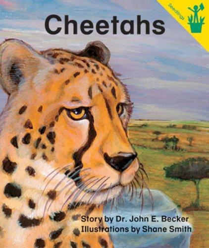 Cheetahs: John Becker