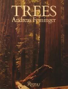 9780847813254: Trees