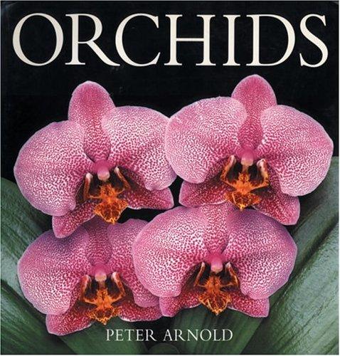 9780847818105: Orchids