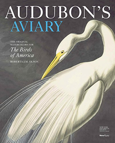 9780847834839: Audubon's Aviary: The Original Watercolors for The Birds of America