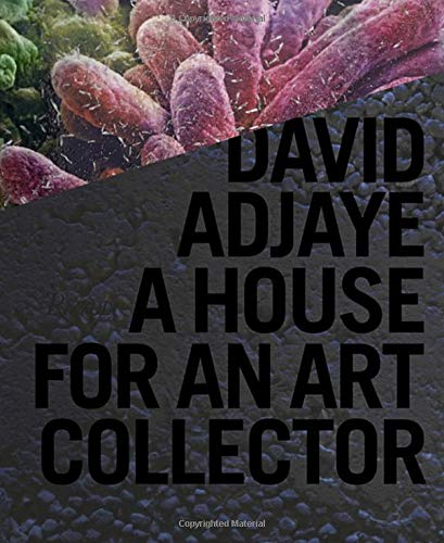 9780847835089: David Adjaye: A House for an Art Collector