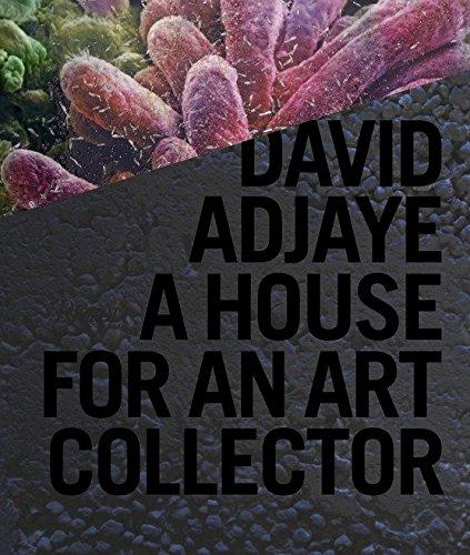 9780847835089: David Adjaye: A House for an Art Collector