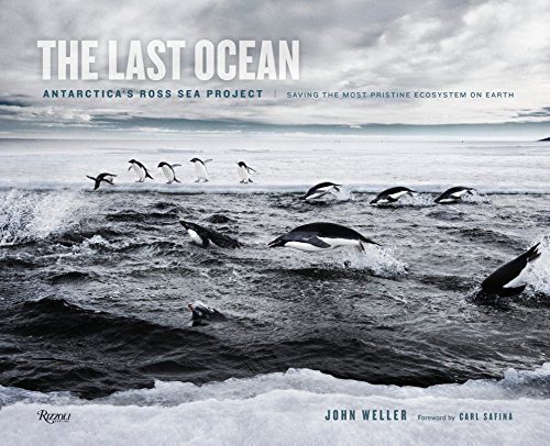 9780847841233: The Last Ocean: Antarctica's Ross Sea Project: Saving the Most Pristine Ecosystem on Earth