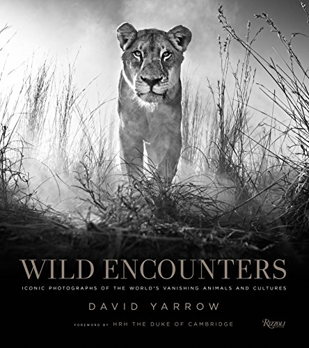 9780847858323: Wild Encounters: Iconic Photographs of the World's Vanishing Animals and Cultures