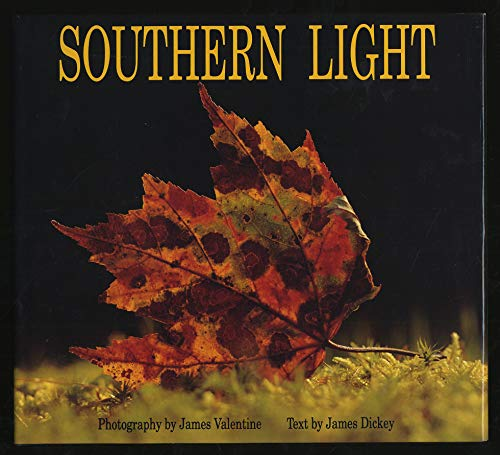 9780848707309: Southern Light