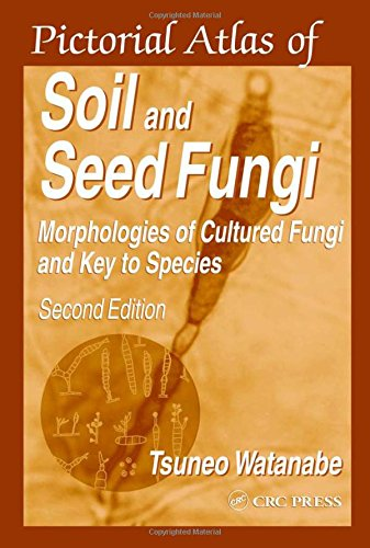 9780849311185: Pictorial Atlas of Soil and Seed Fungi: Morphologies of Cultured Fungi and Key to Species, Second Edition
