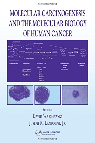 9780849311673: Molecular Carcinogenesis and the Molecular Biology of Human Cancer