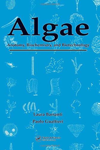 9780849314674: Algae: Anatomy, Biochemistry, and Biotechnology