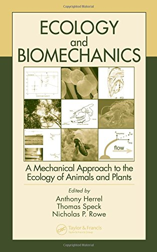 9780849332098: Ecology and Biomechanics: A Mechanical Approach to the Ecology of Animals and Plants