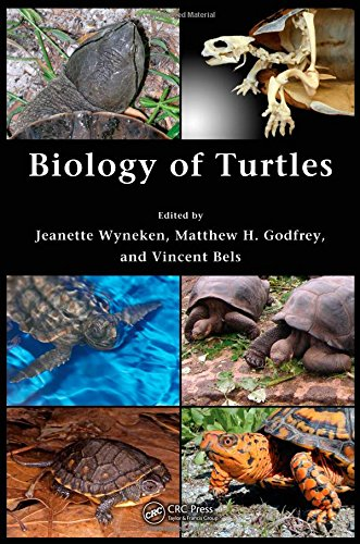 9780849333392: Biology of Turtles: From Structures to Strategies of Life