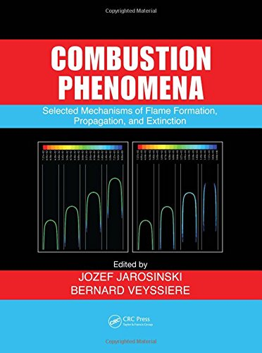 9780849384080: Combustion Phenomena: Selected Mechanisms of Flame Formation, Propagation and Extinction