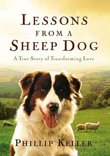 9780849917653: Lessons from a Sheep Dog