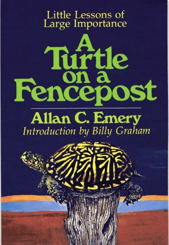 Little Lessons of Large Importance A Turtle: Emery, Allan C.