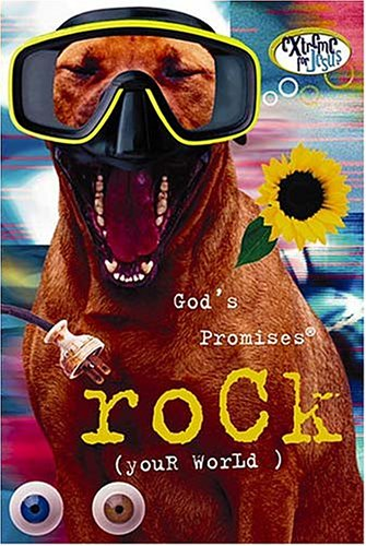God's Promises Rock (Your World) (9780849995071) by J. Countryman