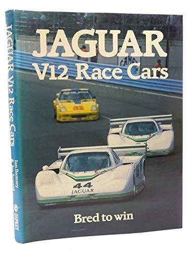 Jaguar V12 Race Cars | Bred to Win: Bamsey, Ian; Saward, Joe