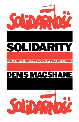 9780851243184: Solidarity: Poland's Independent Trade Unions