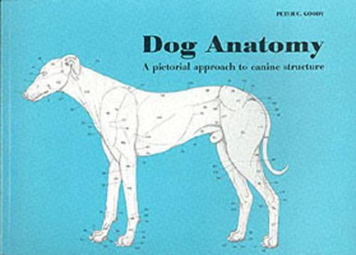 9780851316369: Dog Anatomy: A Pictorial Approach to Canine Structure