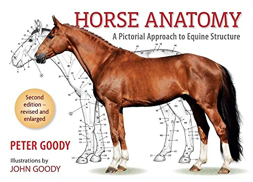 9780851317694: Horse Anatomy: A Pictorial Approach to Equine Structure