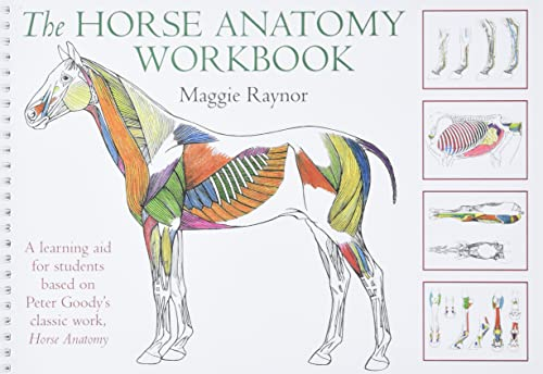 9780851319056: THe Horse Anatomy Workbook: A Learning Aid for Students Based on Peter Goody's Classic Work, Horse Anatomy