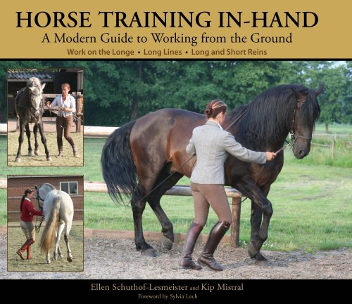 9780851319698: Horse Training In-hand: A Modern Guide to Working from the Ground Work on the Longe, Long Lines, Long and Short Reins