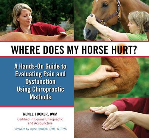 9780851319865: Where Does My Horse Hurt?
