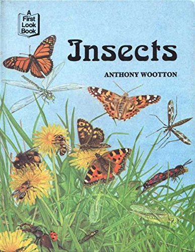 9780851667843: Insects (First Look at)