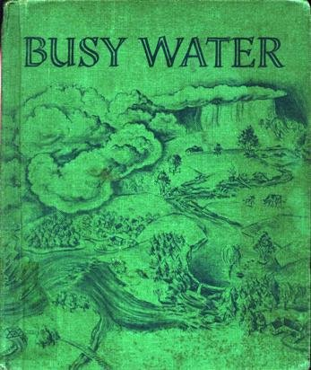 9780851970400: Busy Water