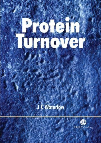 9780851996134: Protein Turnover