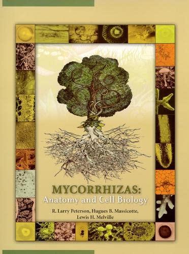 9780851999012: Mycorrhizas: Anatomy and Cell Biology