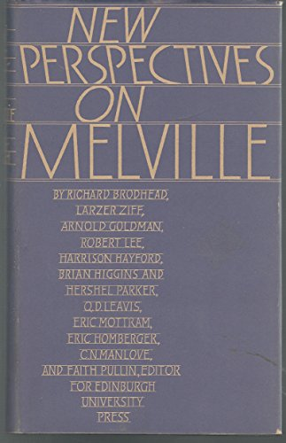 9780852243213: New Perspectives on Melville
