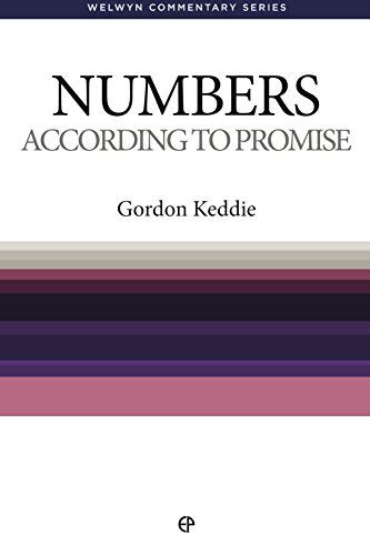 9780852342954: WCS Numbers: According to Promise (Welwyn Commentary Series)