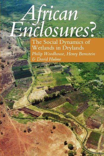 9780852554166: African Enclosures?: The Social Dynamics of Wetlands in Drylands
