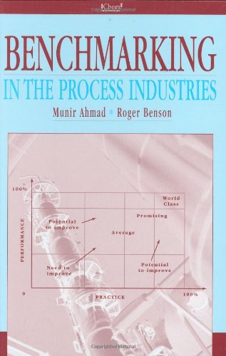 9780852954119: Benchmarking in the Process Industries