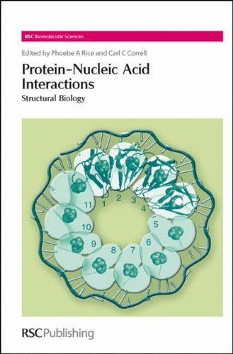 Protein-Nucleic Acid Interactions: Structural Biology (RSC Biomolecular: Rice, Phoebe A