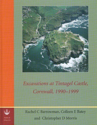 9780854312863: Excavations at Tintagel Castle, Cornwall, 1990-1999 (Reports of the Research Committee of the Society of Antiquar)
