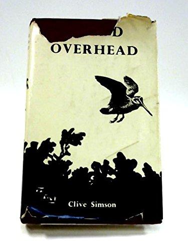 9780854930166: Bird Overhead