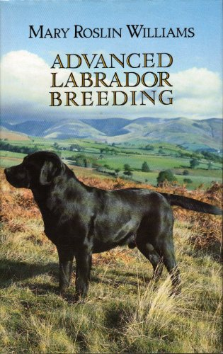 9780854931583: Advanced Labrador Breeding