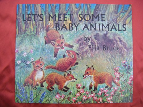 9780855030094: Let's Meet Some Baby Animals