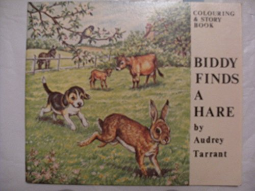 9780855030278: Biddy Finds a Hare