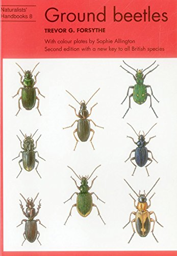 9780855462635: Ground Beetles (Naturalists' Handbooks)