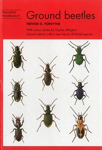 9780855462642: Ground Beetles (Naturalists' Handbooks)