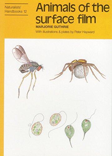 9780855462710: Animals of the Surface Film (Naturalists' Handbooks)