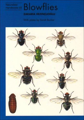 9780855463045: Blowflies (Naturalists' Handbook)