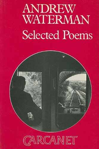 9780856356681: Andrew Waterman: Selected Poems (Fyfield Books)