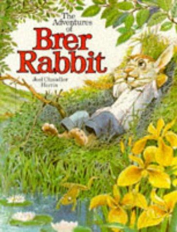 9780856540417: Brer Rabbit